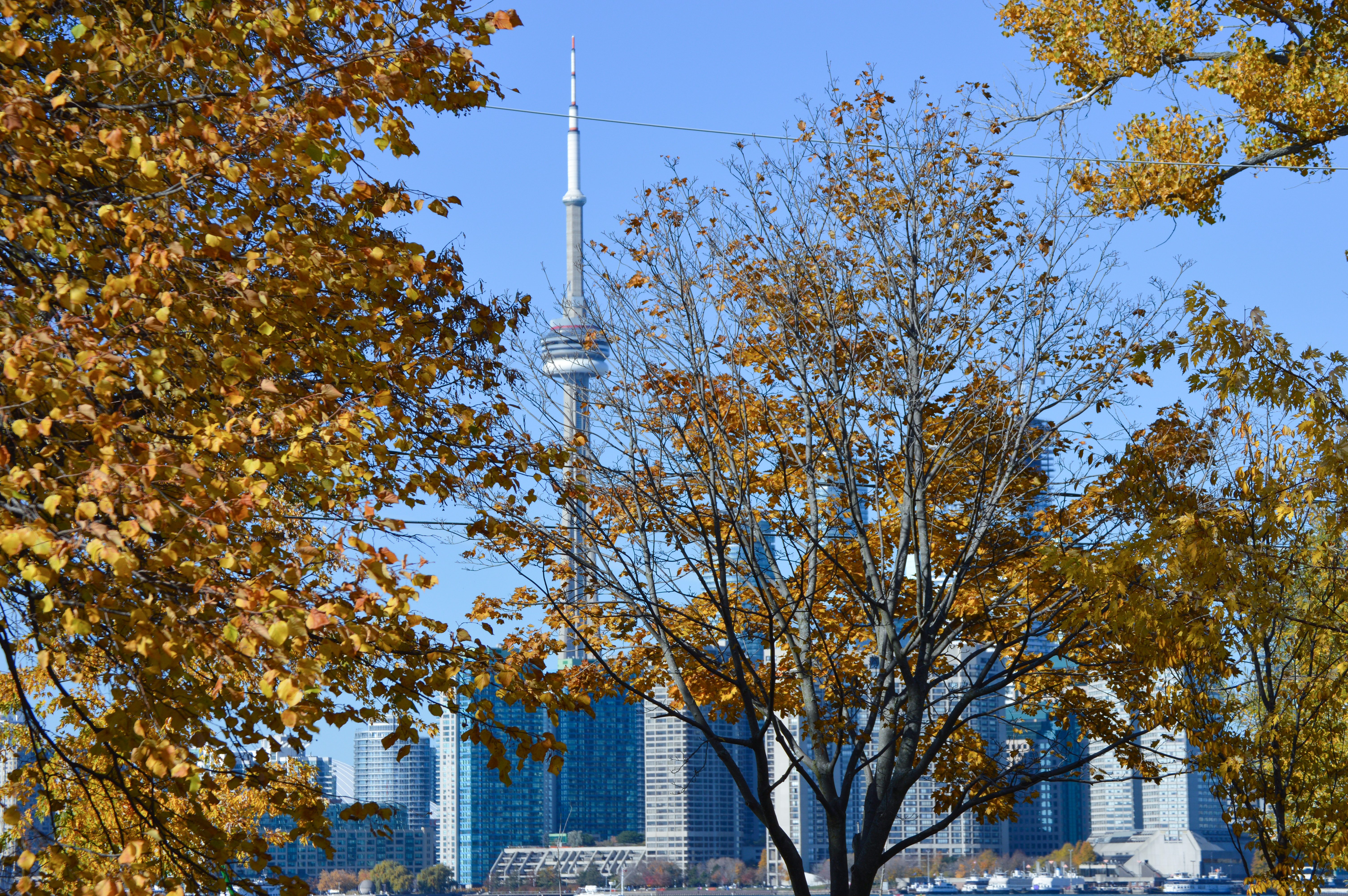 toronto islands - toronto, canada - things to do in toronto